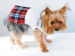 Doggyduds <b>SCHOOL GIRL Платье</b>, Одежда для Собак — в ...