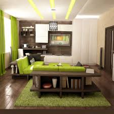 living room decor magnificent decorating ideas bedroom homey living room with sweet light green curtain decor black green living room home