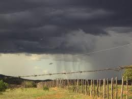 Resultado de imagem para chuvas no sertão