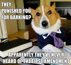 The Best Of The Lawyer Dog Meme | Lawyer, Dog Memes and Meme via Relatably.com