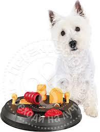 Купить <b>Игрушка</b> для <b>собак</b> Trixie Flip Board <b>развивающая</b> 23см с ...