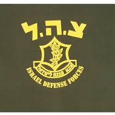 תוצאת תמונה עבור IDF