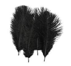 "<b>50PCS 15</b>-<b>20CM</b> /<b>6""-8</b>"" Fullness Ostrich Feather For Home School ..."