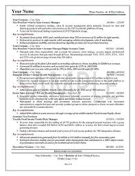 resume-example-exex23b.jpg Executive Sales Resume Example