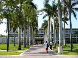 List of University of Miami alumni - Wikipedia