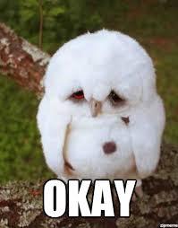 Memes Vault Sad Owl Memes via Relatably.com