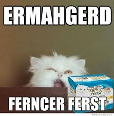 20 Derpiest Ermahgerds | SMOSH via Relatably.com