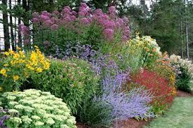 Small Picture Delighful Perennial Flower Garden Ideas Pictures Design Hillside