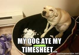 My dog ate my timesheet... - Guilty Dog Eats Homework | Meme Generator via Relatably.com