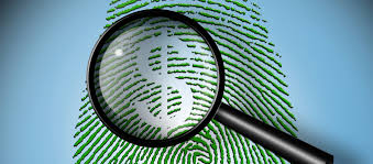 fraud investigation financial investigator