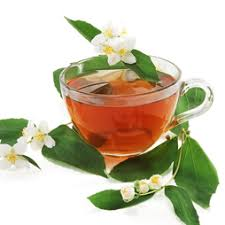 Výsledek obrázku pro camellia sinensis.