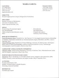 internship resume example   google search   career tings    internship resume example   google search