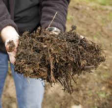 s l to resume curbside compost collection week of feb 27 s l to resume curbside compost collection week of feb 27