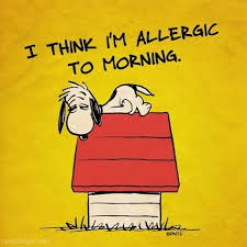 allergic to morning funny quotes quote snoopy funny quote funny ...