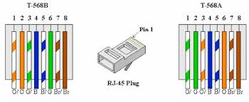 cat  ethernet cable wiring diagram  how to wire your house with    cat  ethernet cable wiring diagram