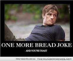 Hunger Games Memes on Pinterest   Funny Hunger Games, Hunger Games ... via Relatably.com