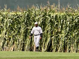 Image result for field of dreams pictures