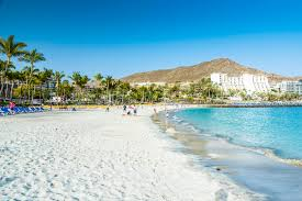 Image result for gran canaria