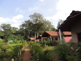 Проживание в семье Dandeli - <b>Jungle</b> Nest (Индия Дандели ...