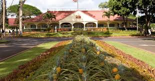 Where to find fresh <b>pineapple</b> (and learn its history) in <b>Hawaii</b> - Los ...