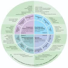 skills and characteristics of a pi vitae website rdf sub s and descriptors