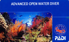 Image result for padi advanced open