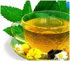 Картинки по запросу Целебные свойства зеленого чая