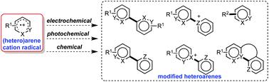 Recent progress in (hetero)arene <b>cation</b> radical-based heteroarene ...