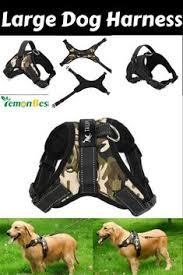 OxGord <b>Pet Control Harness</b> for Dog & Cat Easy Soft Walking Collar ...