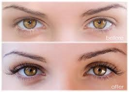 Image result for Lash and brow tinting images free