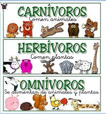 http://www.primaria.librosvivos.net/archivosCMS/3/3/16/usuarios/103294/9/cm3ep_u6_alimentacanim/frame_prim.swf