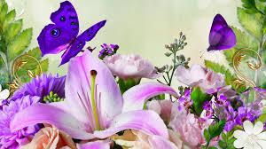 Image result for spring flowers images