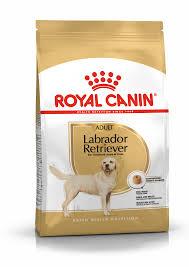 <b>Labrador Retriever</b> Adult Dry - <b>Royal Canin</b>