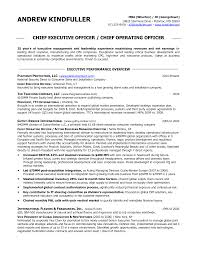 CIO Sample Resume  Chief Information Officer Resume  IT resume service  amp  executive resume service  Dawtek Resume and Esay