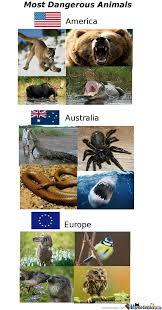 Most Dangerous Animals by FreakyMasterChief - Meme Center via Relatably.com