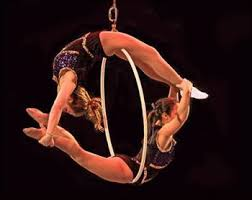 Image result for logo for the Sarasota sailor circus