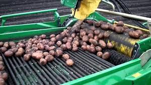 Картинки по запросу картофелеуборочная техника картинки