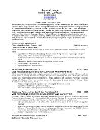 resume summary of qualifications resume badak summary of qualifications on resume examples