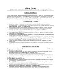 marketing resume objective statement  socialsci cocareer objective for sales resume with sales marketing experience   marketing resume objective