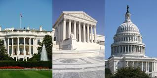 Image result for capitol and white house images