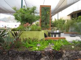 ryan prange tag archive modern contrasting textures and a sub tropicalwater wise plant palate play well charming office plants