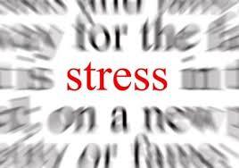 Hoort stress bij jouw droomcarrière?
