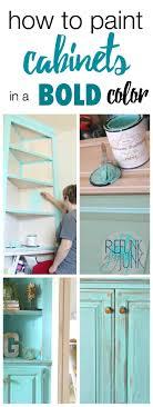 kitchen cabinets paintcabinets