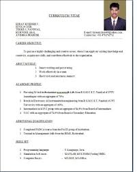 Free Resume Samples  u    amp  Writing Guides for All