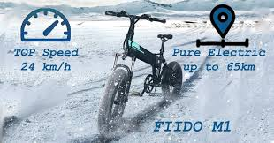 <b>FIIDO M1</b>: the review of FIIDO fat-tire <b>e</b>-<b>bike</b> – PeakPerforms