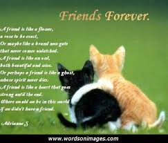 Friendship Quotes On Valentine S Day : Friendship Quotes ... via Relatably.com