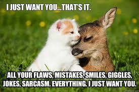 I Just Want You Cat Meme - Cat Planet | Cat Planet via Relatably.com