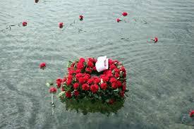 denizde kırmızı karanfiller ile ilgili görsel sonucu