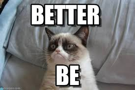 Better - Grumpy Cat Bed meme on Memegen via Relatably.com