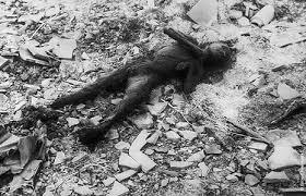 a photo essay on the bombing of hiroshima and nagasakinag  jpg   bytes